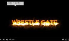 WrestleGateバトルシアター2016<第94幕>